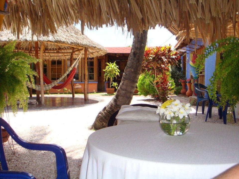 Blick vom Frühstückstisch! Hotel Posada Nena