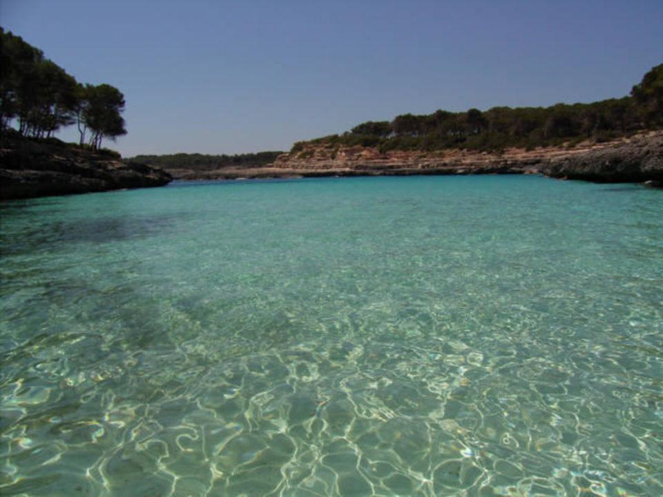 Meerwasser IBEROSTAR Club Cala Barca