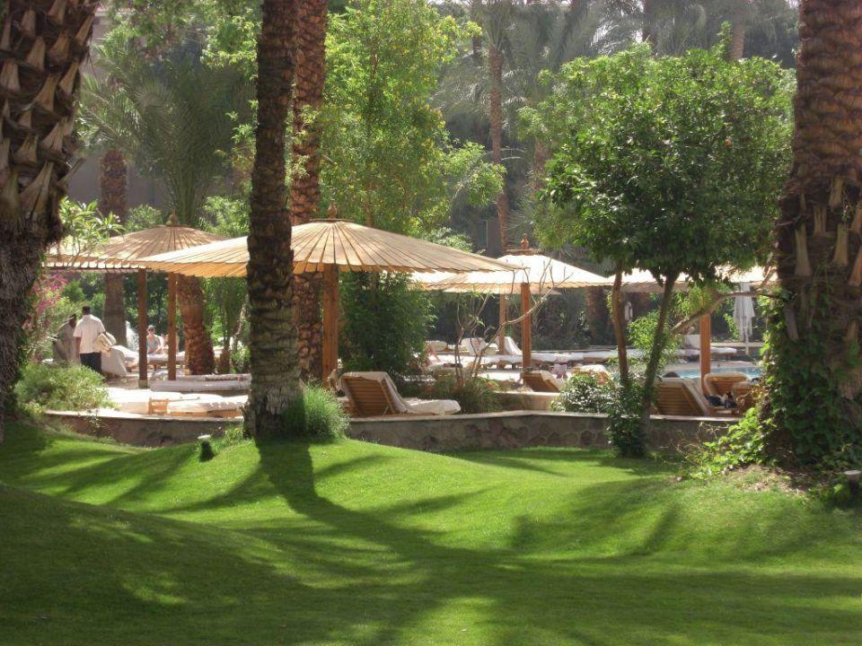 Schöner Garten Und Poolanlage Im Winter Palace Hotel Sofitel Pavillon  Winter Luxor