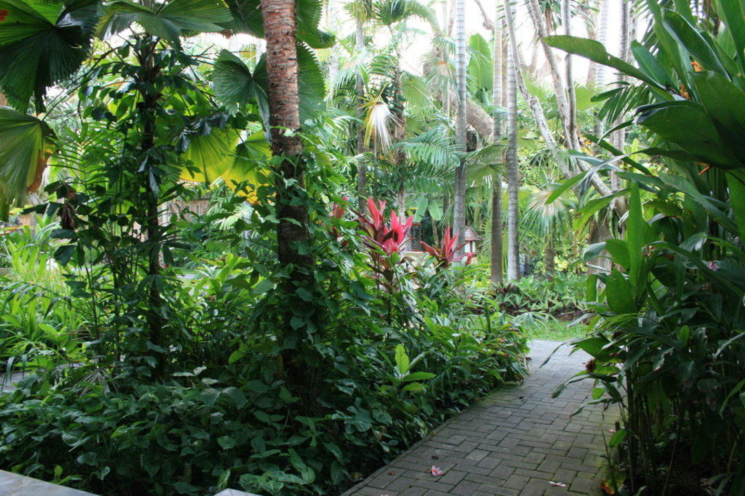 Gartenblick von der Terrasse Hotel Puri Santrian