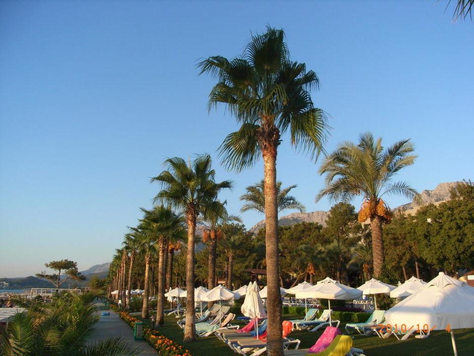 Hotel Anlage Hotel Mirada del Mar
