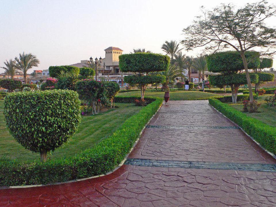 Blick in den Garten Dana Beach Resort