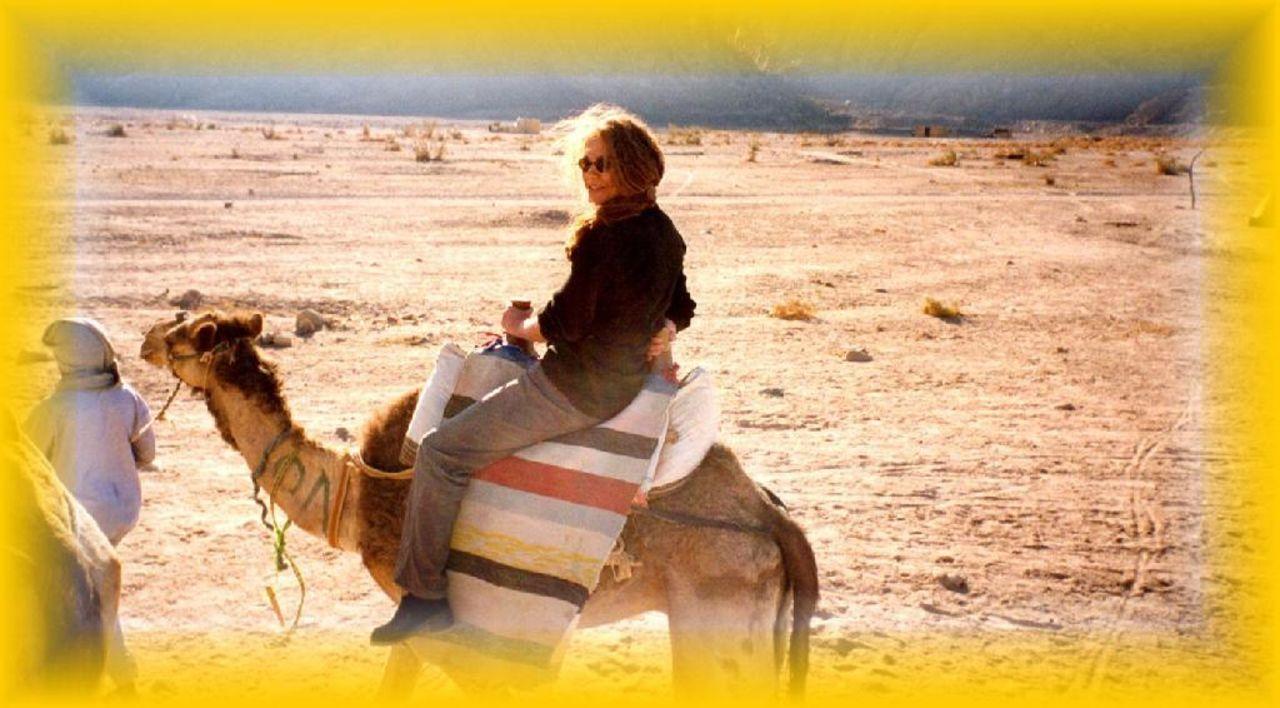 Kamelreiten Arabella Azur Resort