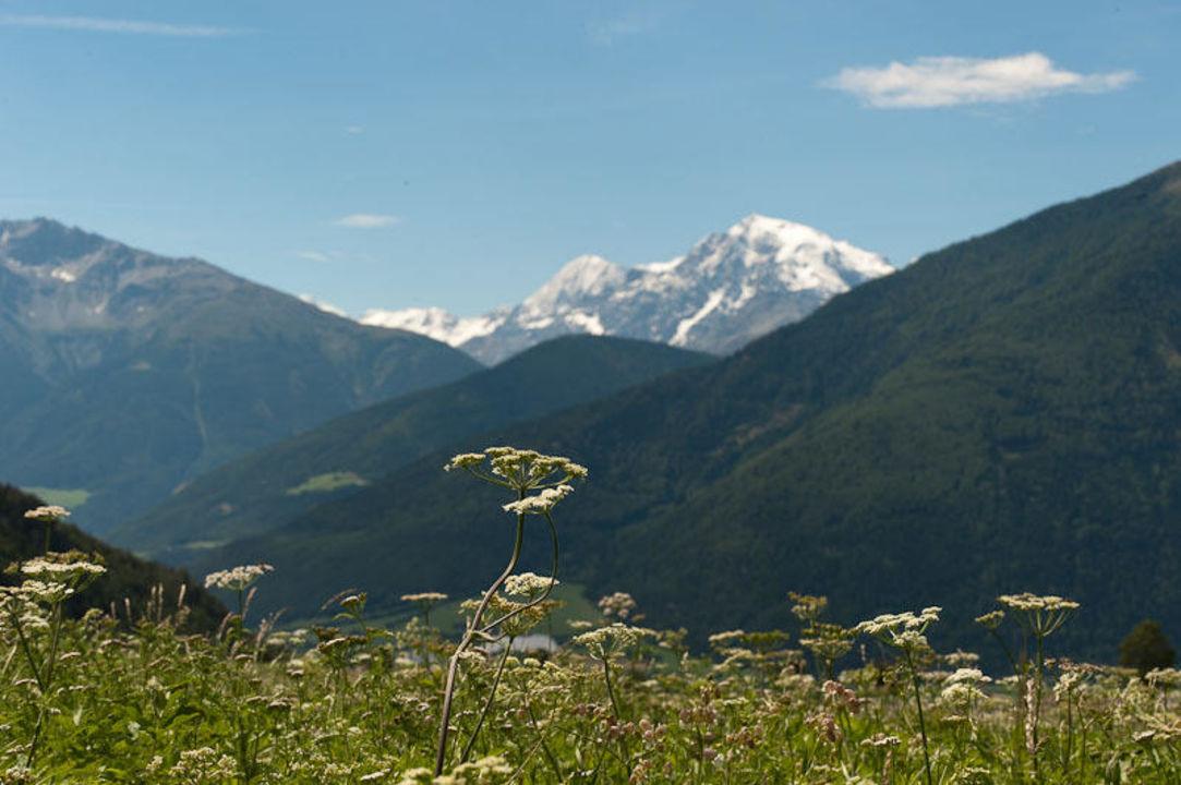 Höchster Berg Südtirols