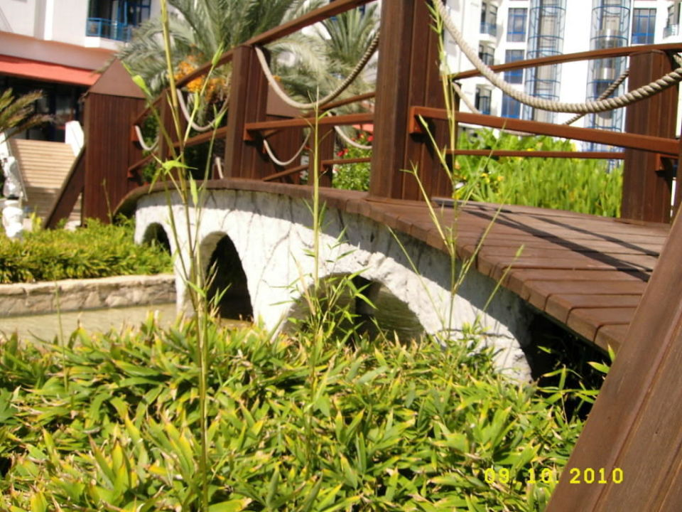 Kleine Brücke! Green Max Hotel