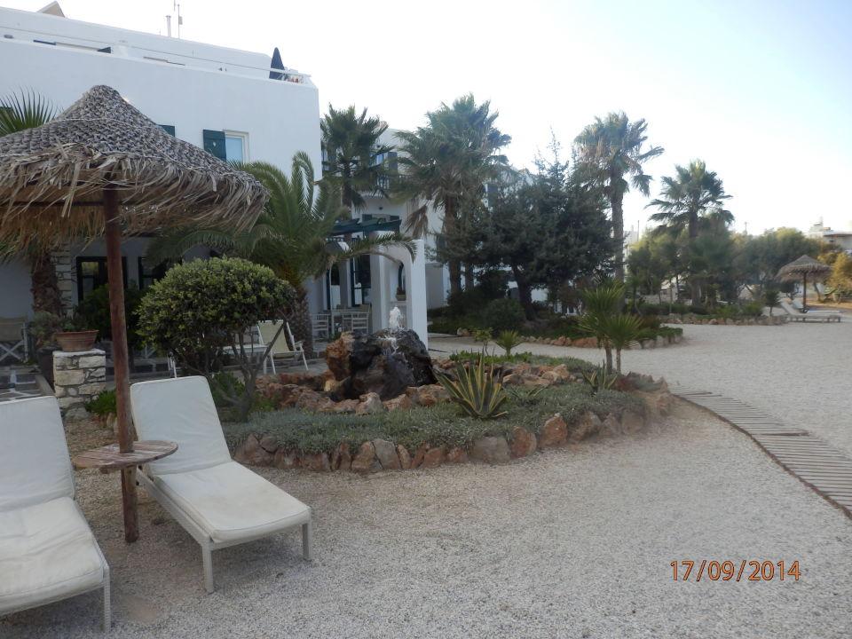 relaxliegen im garten hotel kalypso naoussa holidaycheck paros griechenland. Black Bedroom Furniture Sets. Home Design Ideas