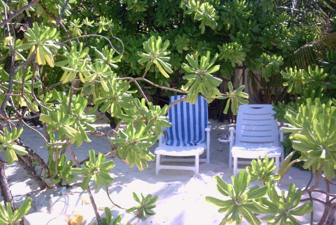 Der Strand vor unserer Türe Maayafushi Resort