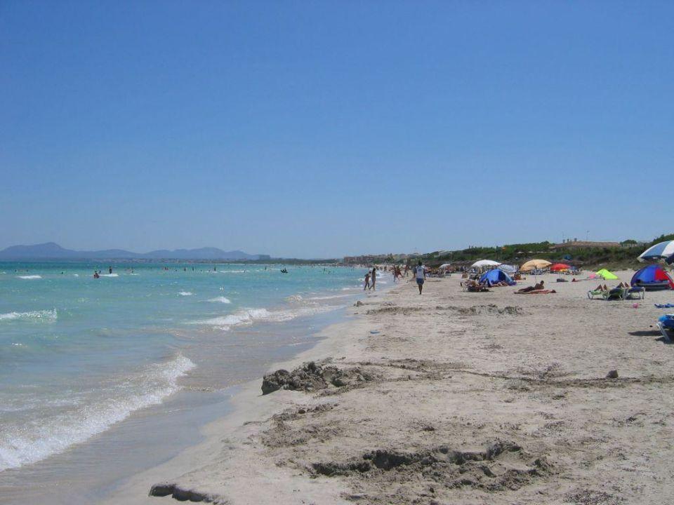 Der Strand direkt am Hotel Grupotel Natura Playa