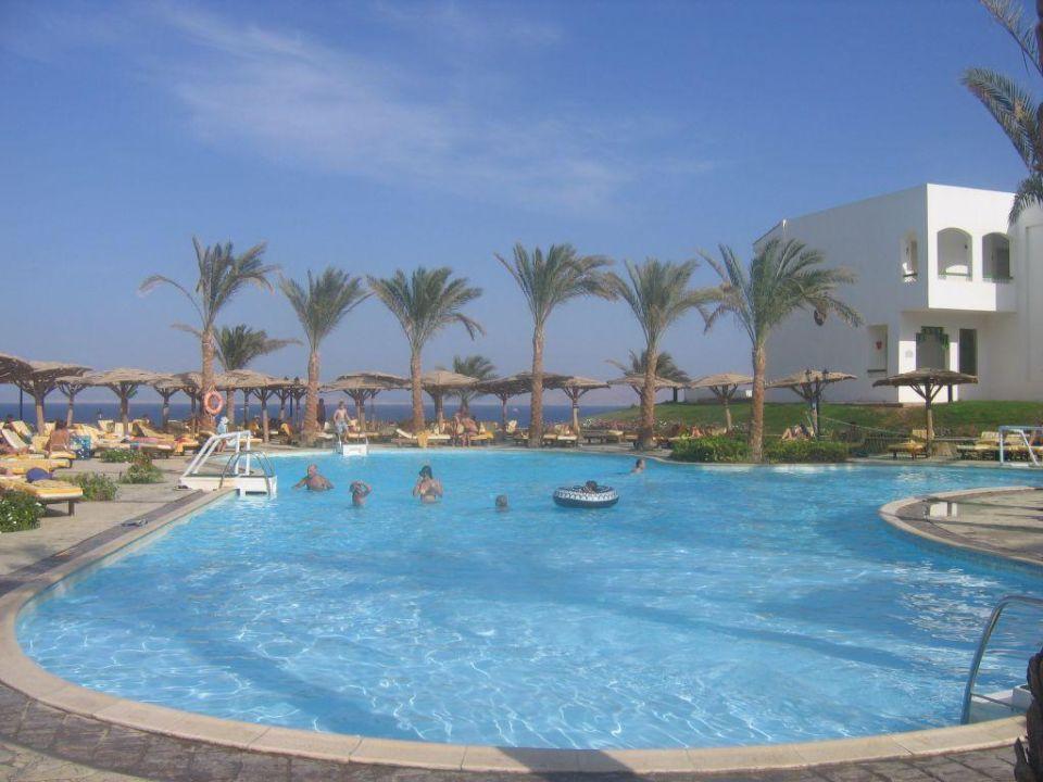 Pool Coral Beach Tiran Resort