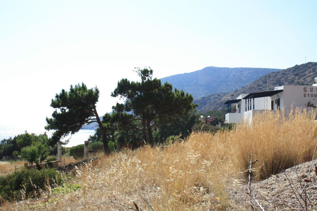 Seitenansicht Sunset Studios Adia Bay / Pine Tree