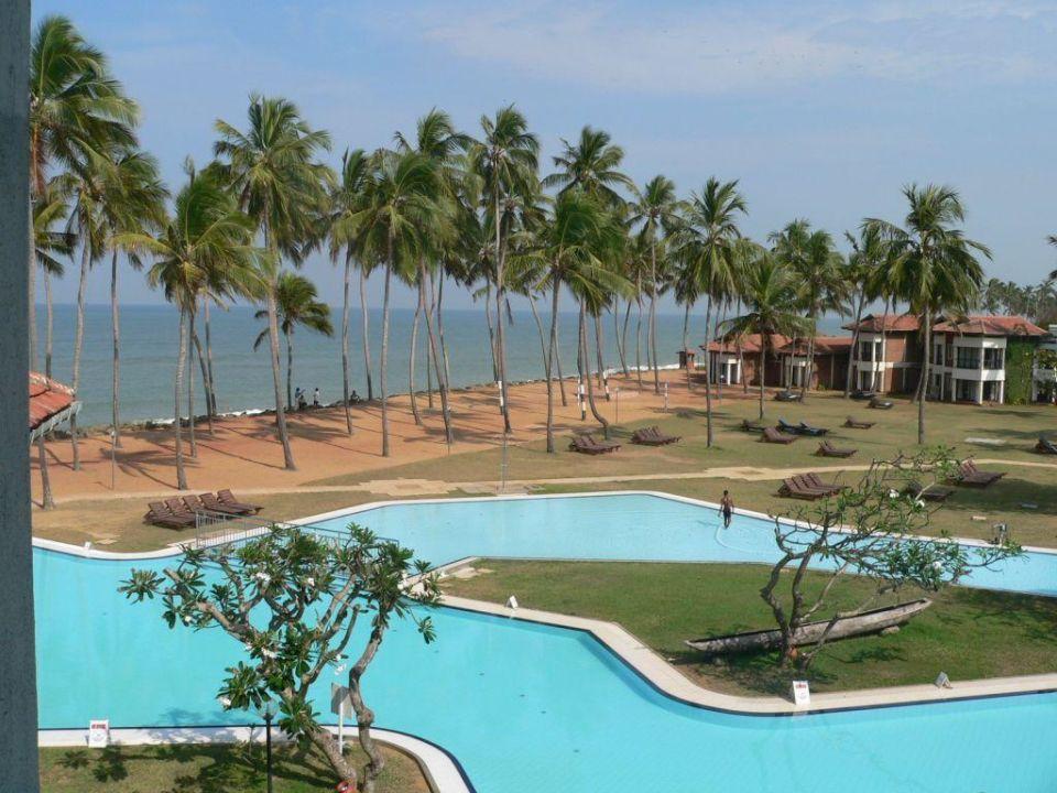 Pool und Strand des Hotel Dolphin Club Hotel Dolphin