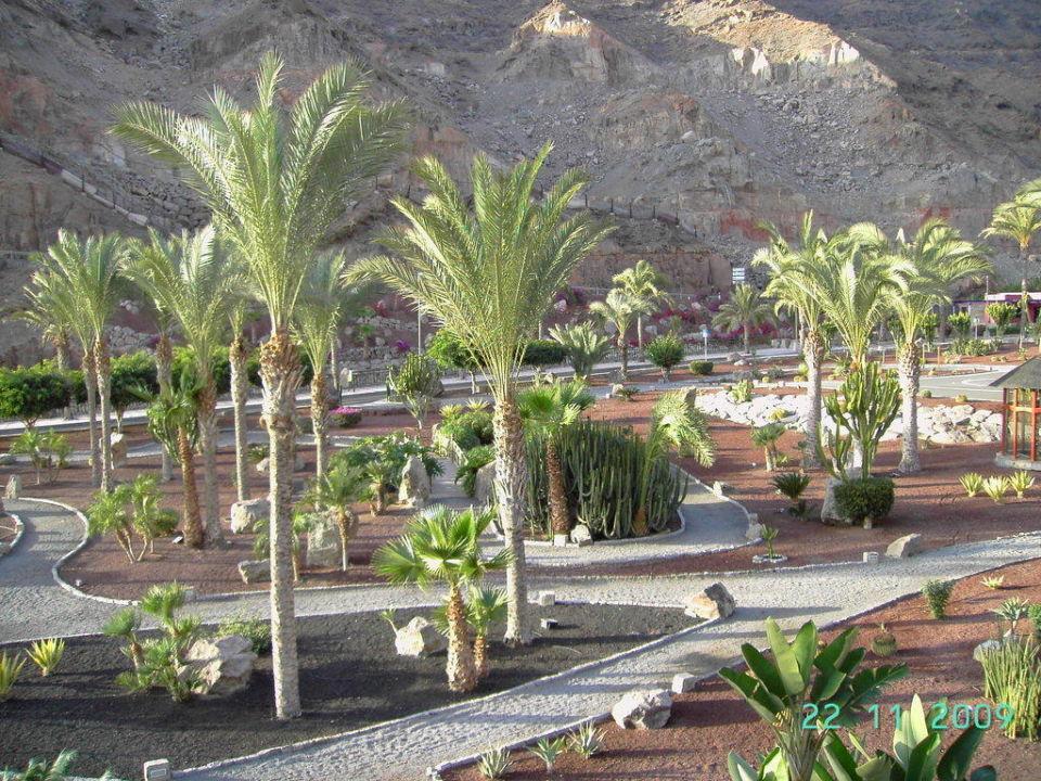 Jogginganlage Hotel Paradise Valle Taurito