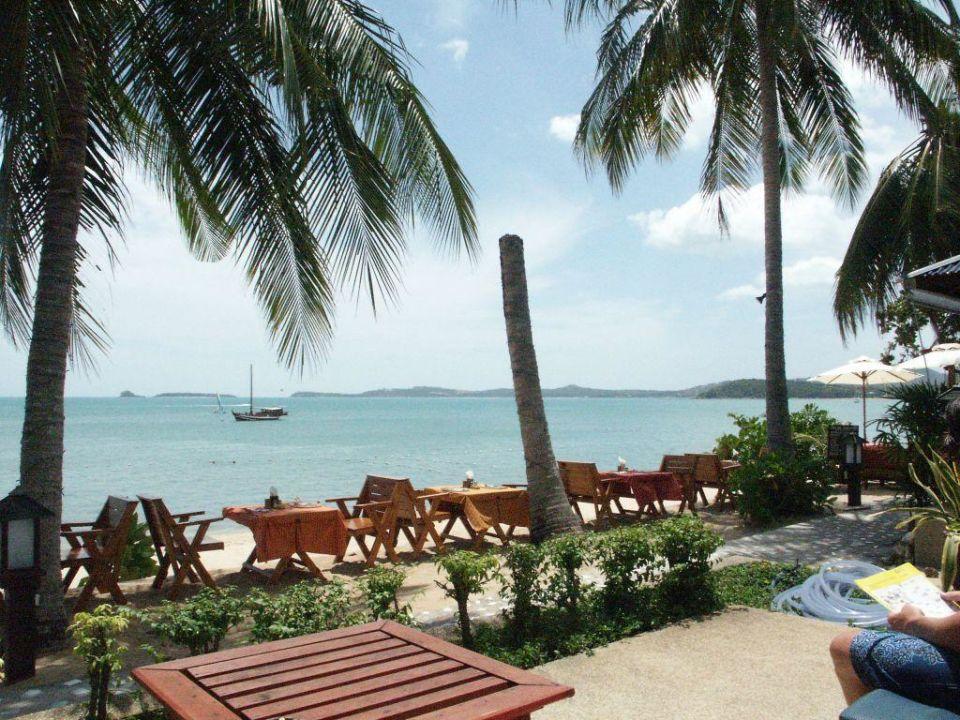 Strand / Restaurant Hotel Peace Resort