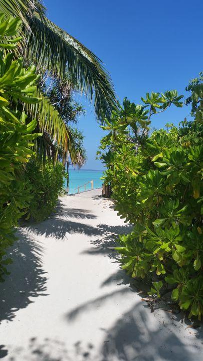Gartenanlage Angaga Island Resort
