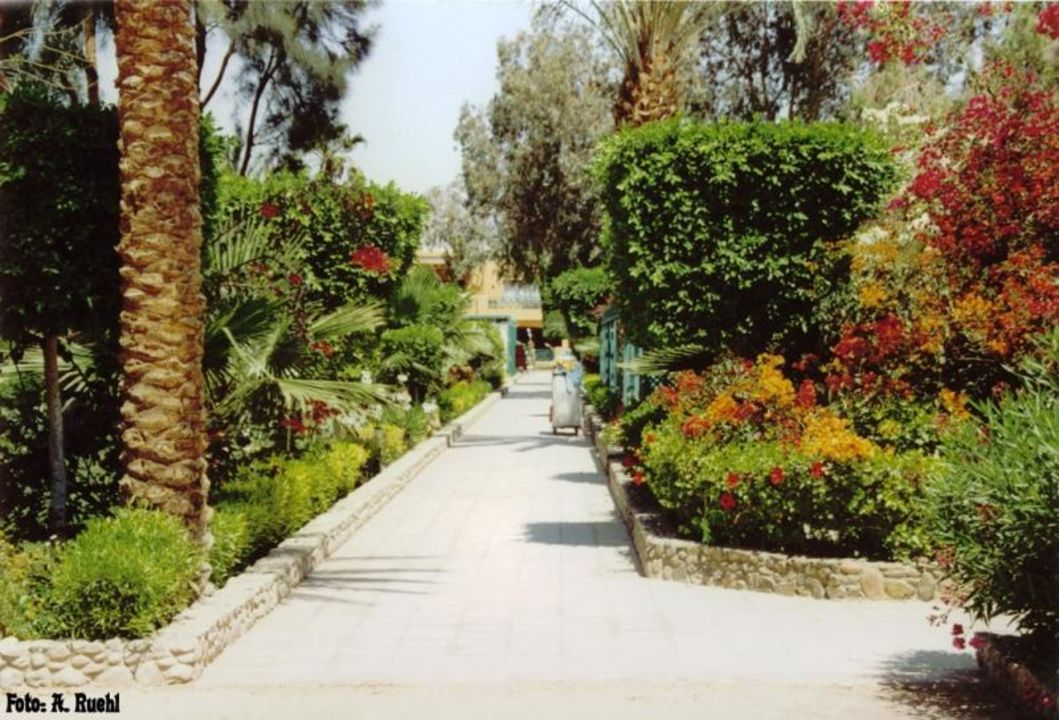 Hotel Giftun - Anlage Blick zum Haupthaus Giftun Azur Resort