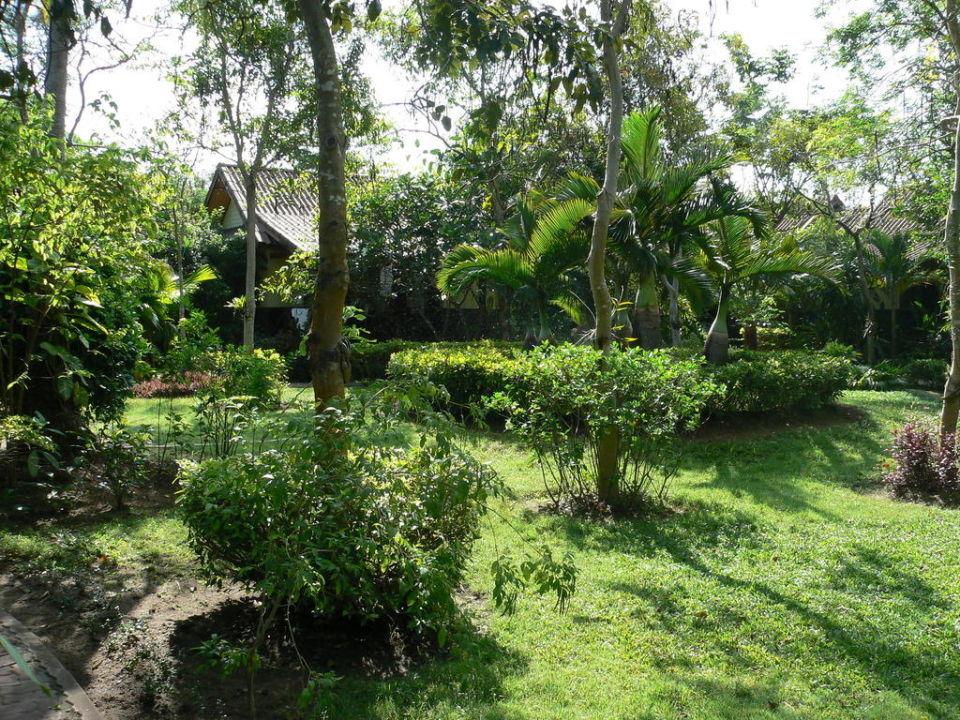 Blick in den Garten Pinnacle Samui Resort