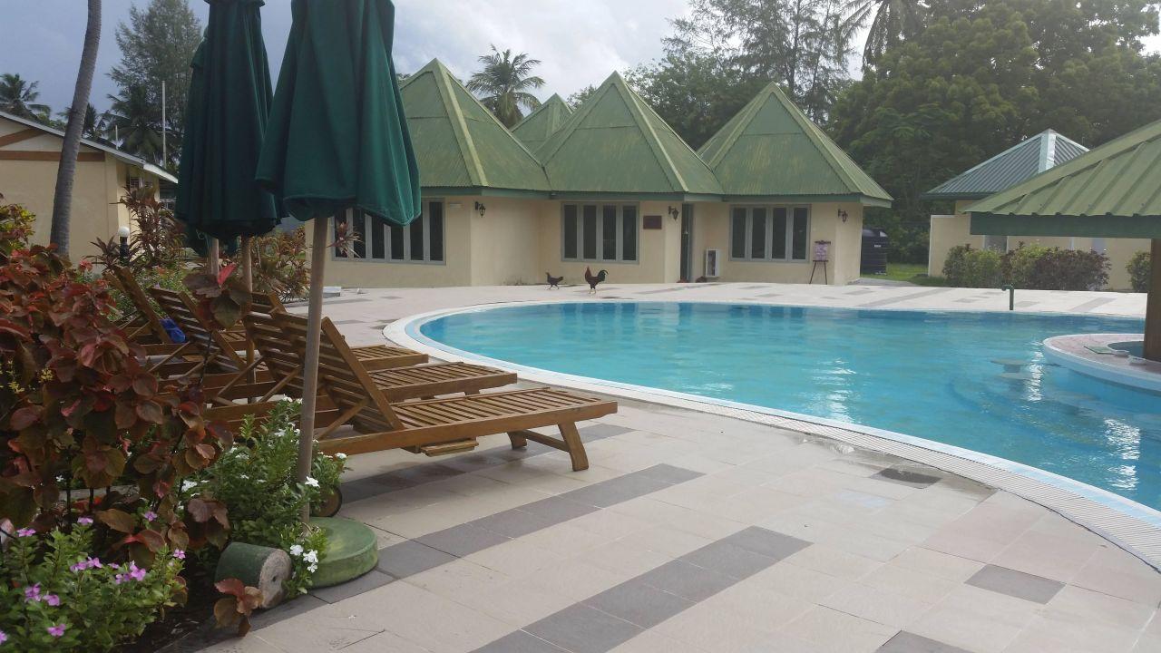 Bild tisch dekoration zum geburtstag zu hotel equator for Pool dekoration