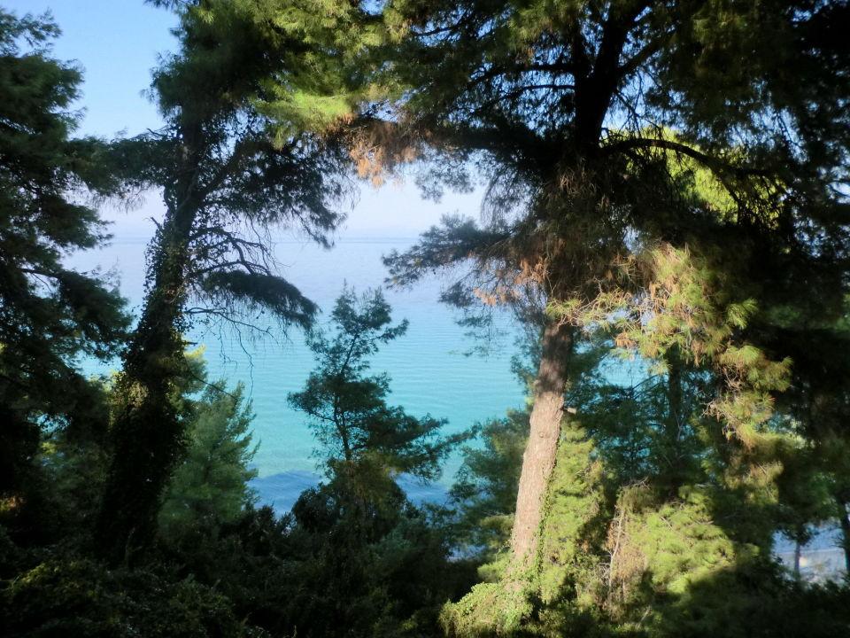 Auf dem kleinen Abstieg Richtung Strand Poseidon View