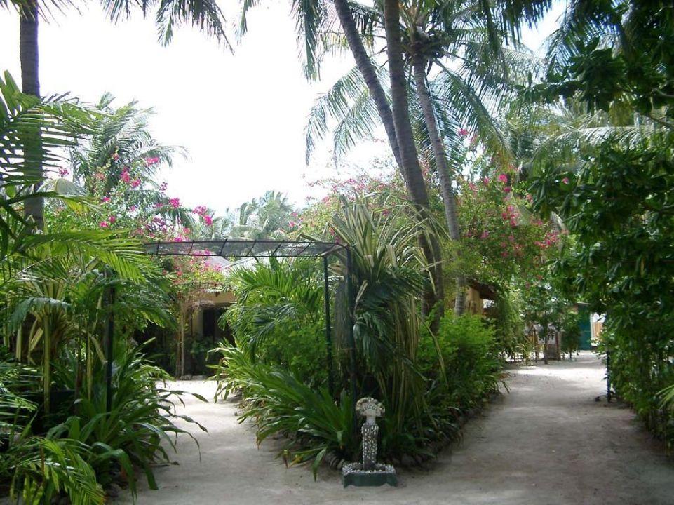 Garten Summer Island Maldives