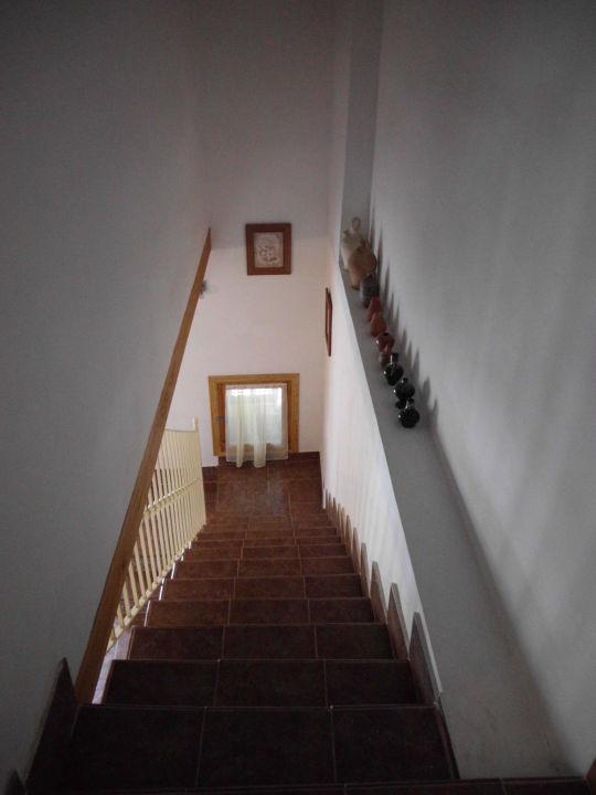 Treppe zum Wohnzimmer\