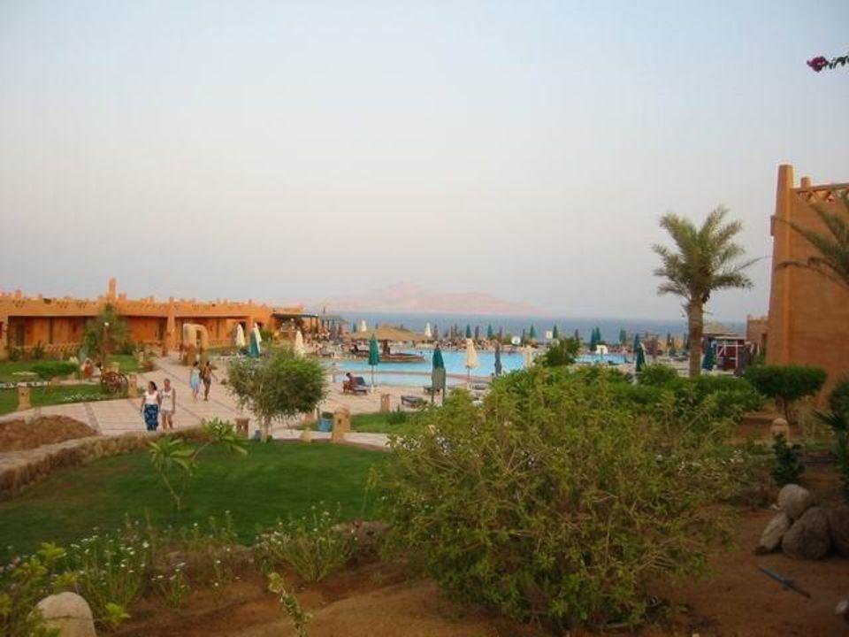Pool Hotel Hauza Beach Resort