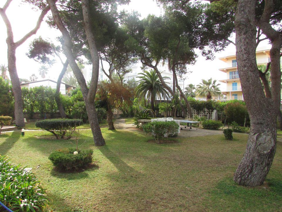 sch ne kleine hotelgartenanlage hotel riu concordia platja de palma playa de palma. Black Bedroom Furniture Sets. Home Design Ideas