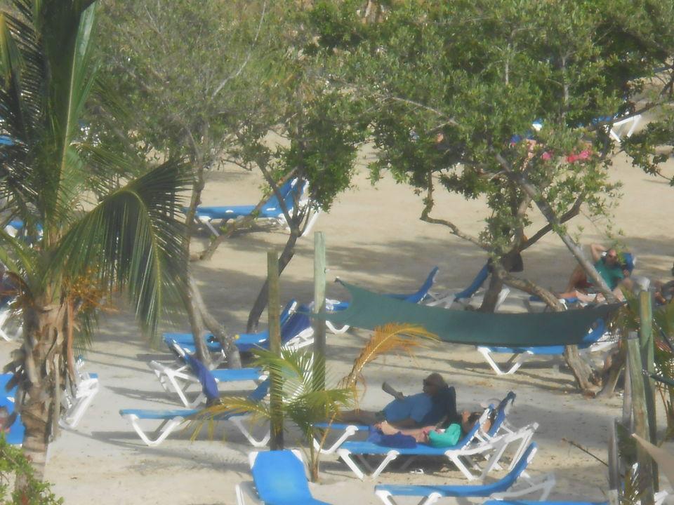 Sunbathing Hotel The Verandah Resort