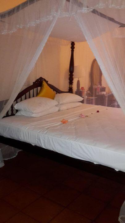 bild matratzen und auflagen zu siddhalepa ayurveda health resort in wadduwa. Black Bedroom Furniture Sets. Home Design Ideas