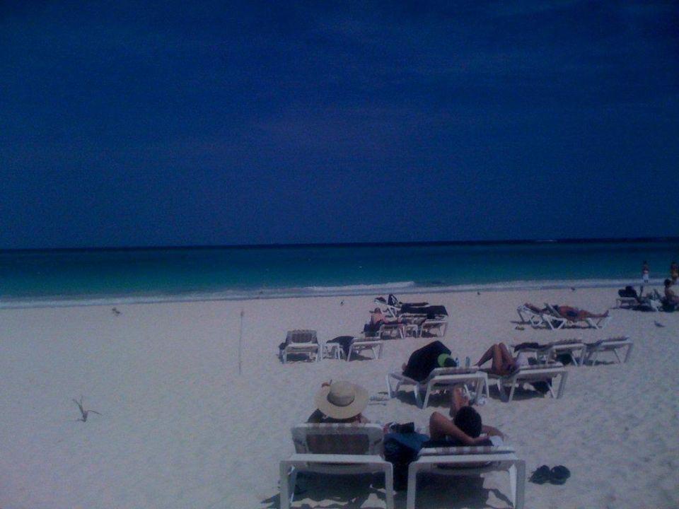 Perfekter, breiter, karibischer Strand Secrets Maroma Beach Riviera Cancun - Adults only