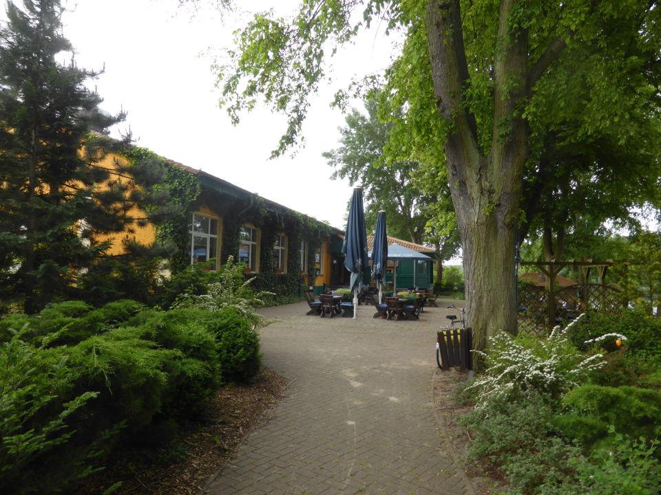 """""""Haus am See Restaurant Zechlinerhütte Seeseite"""" Hotel"""