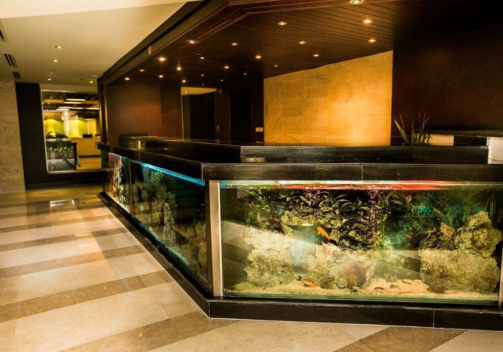 Aquarium Reception The Bosque Hotel