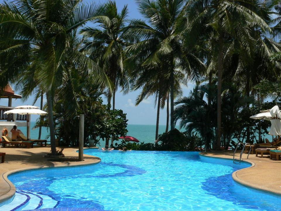 Blick vom Pool zum Meer Pinnacle Samui Resort