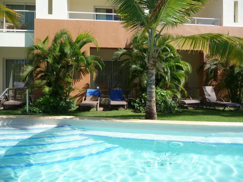Swim Up Room Secrets Royal Beach Punta Cana S Only