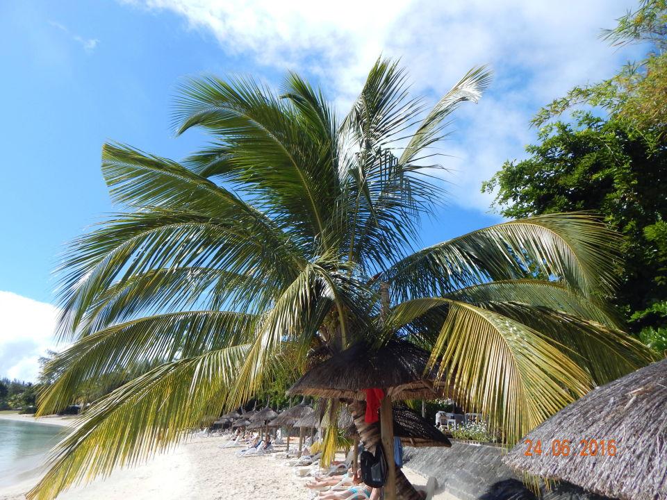 Merville Beach Hotel Mauritius