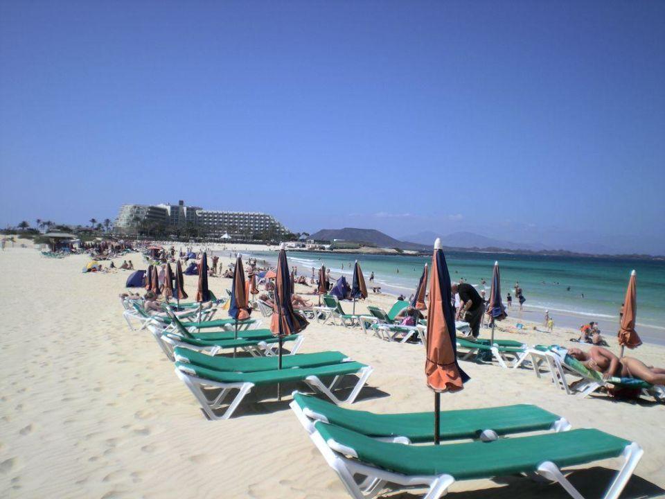 Bild quot strand quot zu clubhotel riu oliva beach resort in corralejo