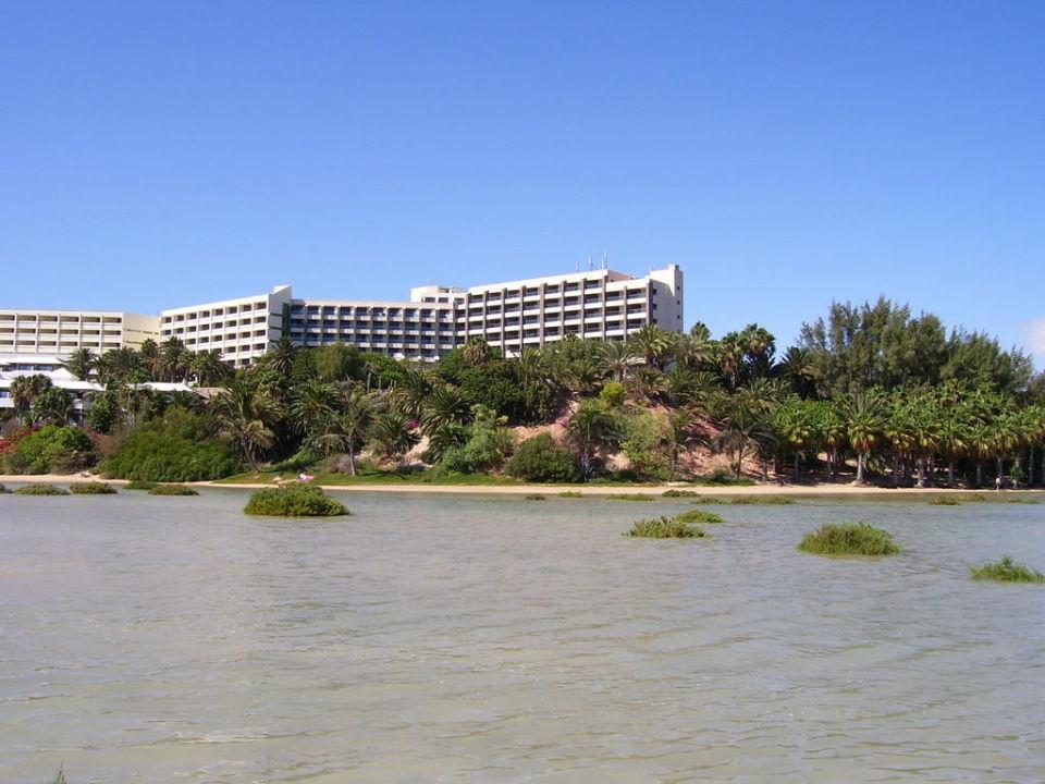 Strand vom Hotel Melia Goriones Melia Fuerteventura