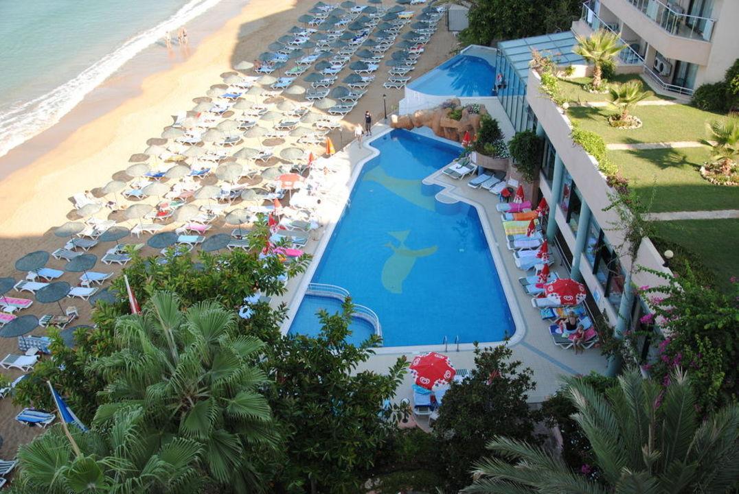 Blick auf Pool und Strand Aska Hotel Just in Beach