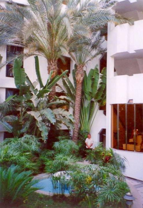 IFA BEACH HOTEL Innenhof Corallium Beach by Lopesan Hotels - Adults only