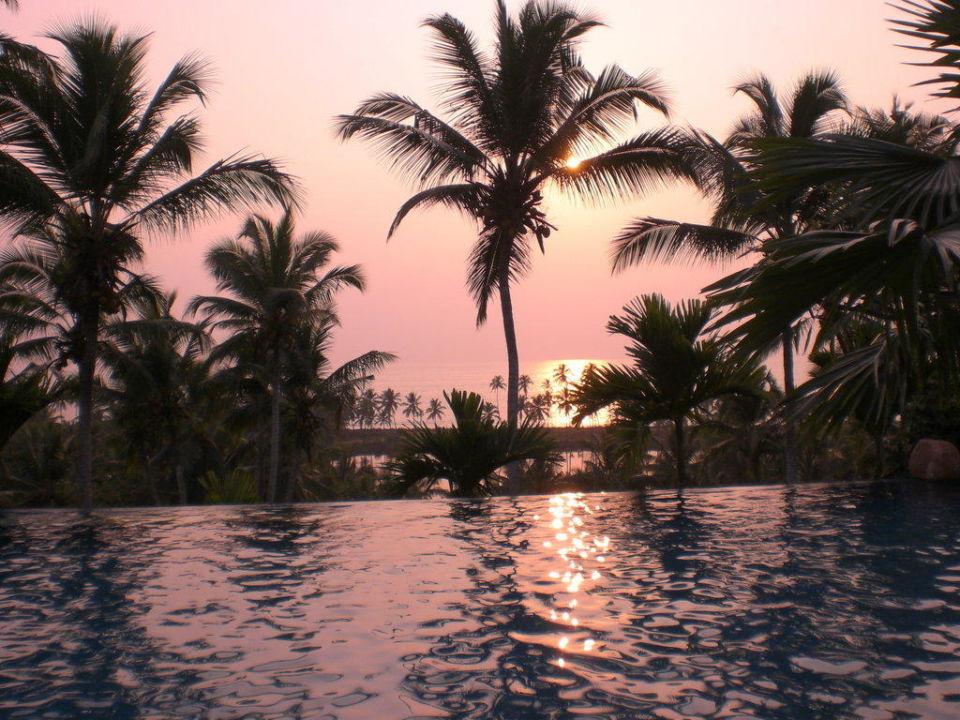 Infinitypool im Sonnenuntergang Hotel Vivanta by Taj Kovalam