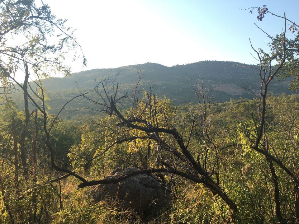 Außenansicht Bongani Mountain Lodge