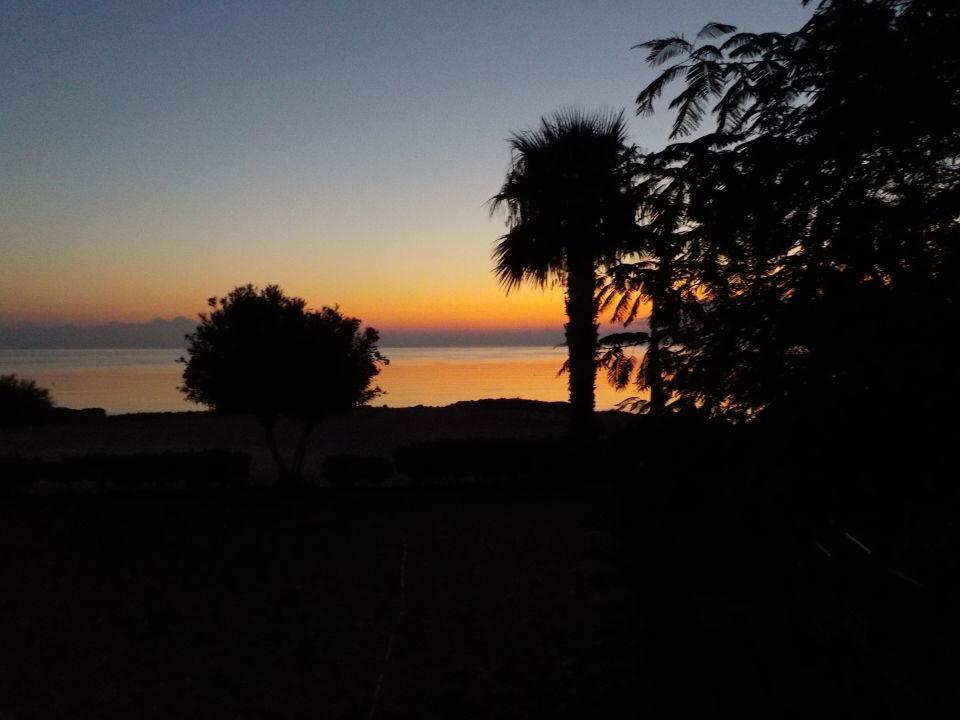 Ausblick Louis Althea Beach Hotel