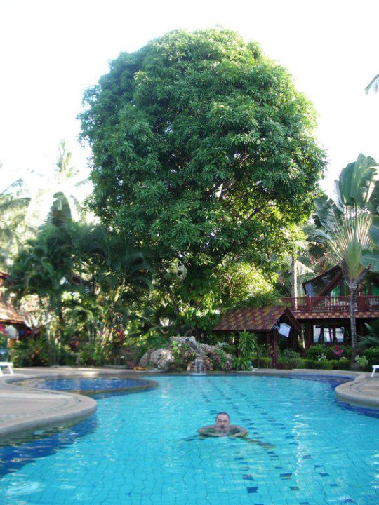 Diverse Ansichten Anlage Tropicana Coconut Tropicana T 1