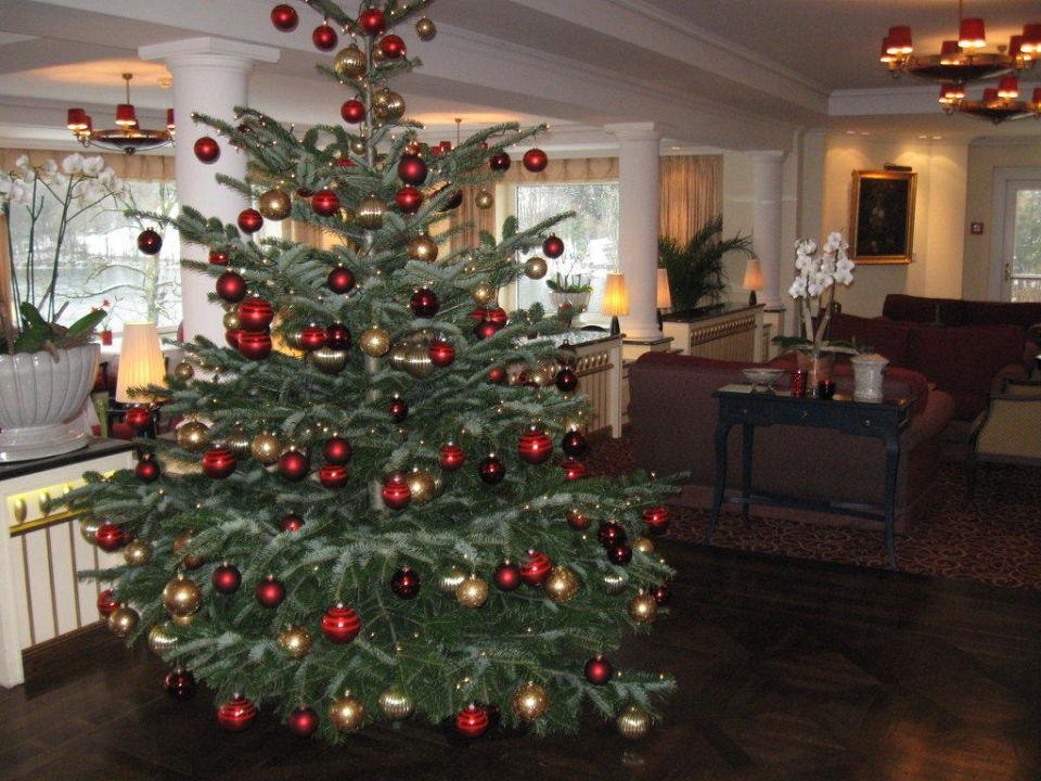 österreich Weihnachtsbaum.Weihnachtsbaum Im Restaurant Schloss Fuschl A Luxury Collection