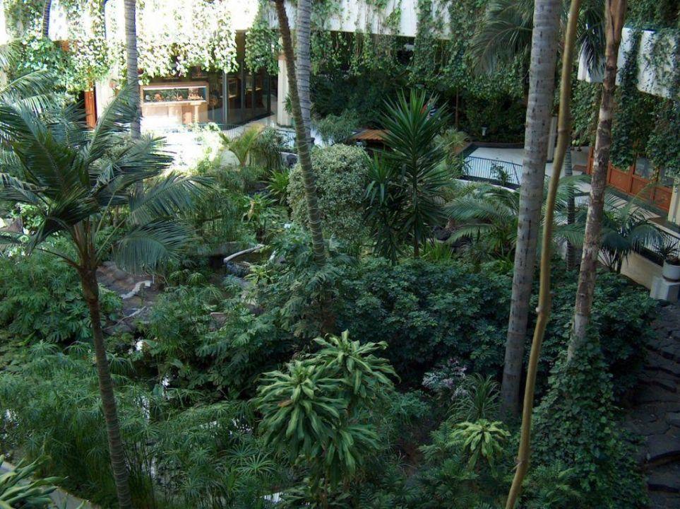 Der begrünte Innenhof im Hotel Melia Salinas