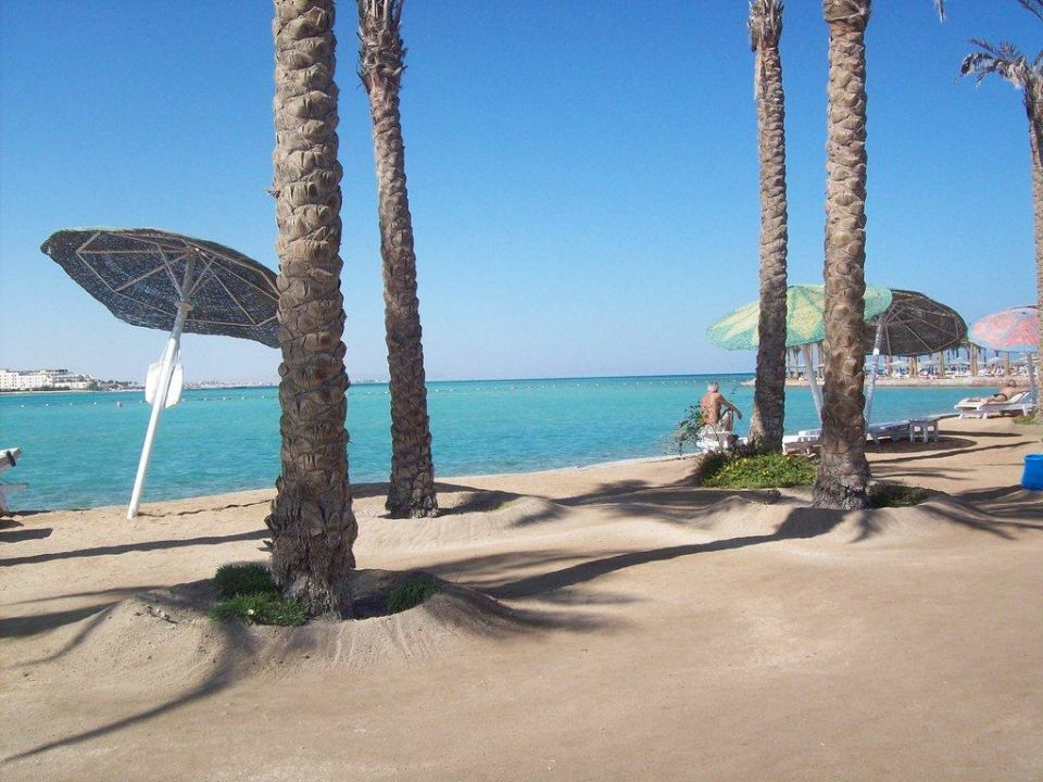 Hotelstrand Festival Shedwan Golden Beach Resort  (Im Umbau/Renovierung)