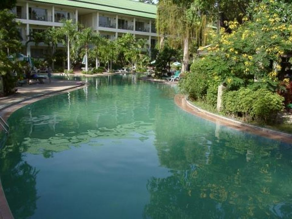 Pool mit grünem abgestandenem Wasser The Green Park Resort