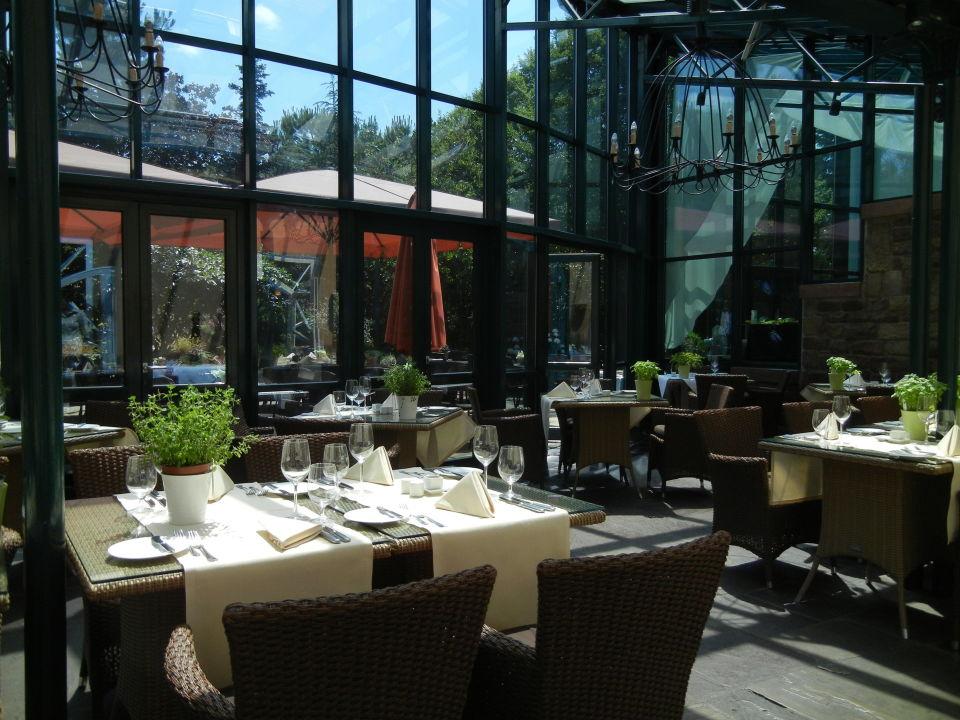 Wintergarten Speyer restaurant salierhof wintergarten lindner hotel spa binshof