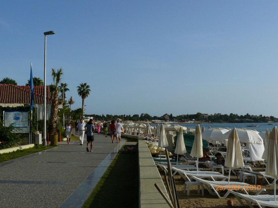Beach Trendy Side Beach Hotel