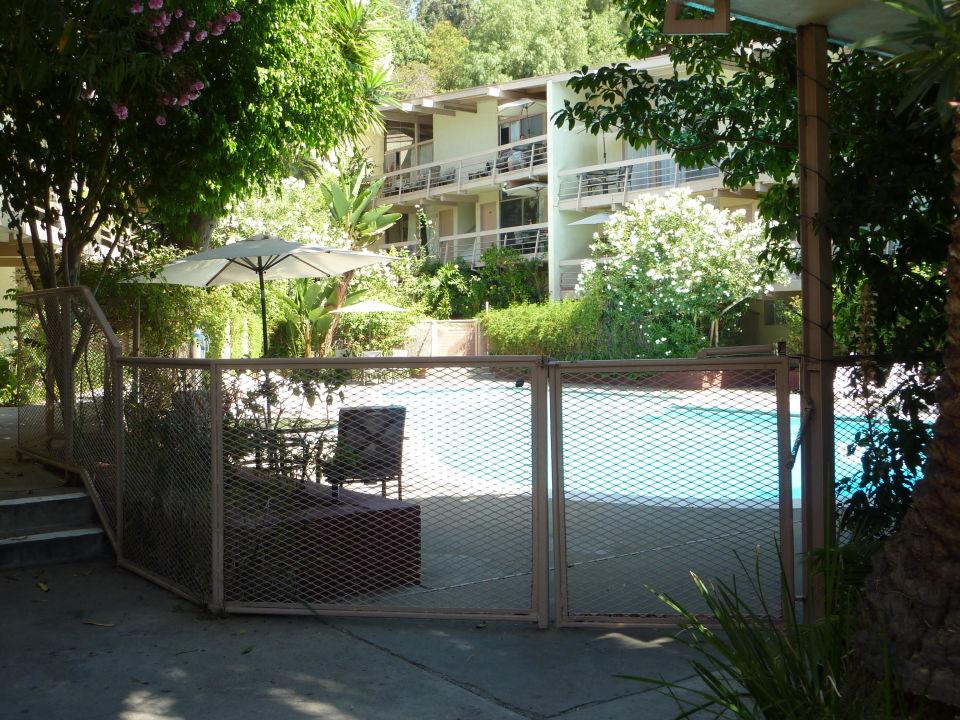 Der Pool steht in der Mitte der Gartenanlage\
