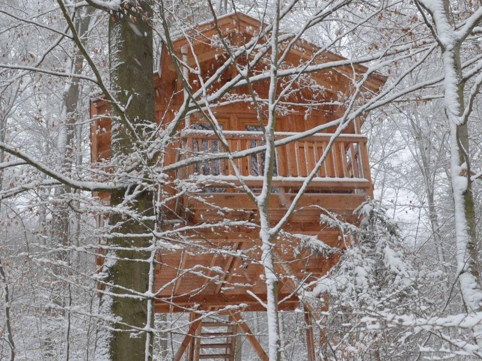 Baumhaushotel Niedersachsen baumhaus refugium winter baumhaushotel solling in uslar